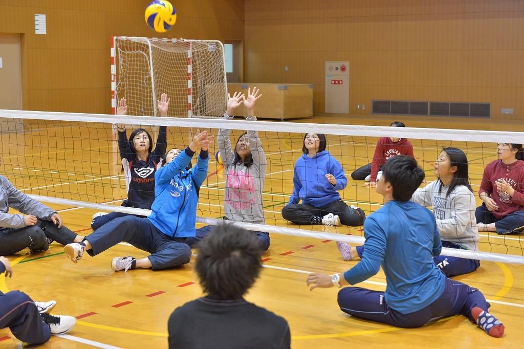 「障害者スポーツ」の授業でシッティングバレーボールを体験